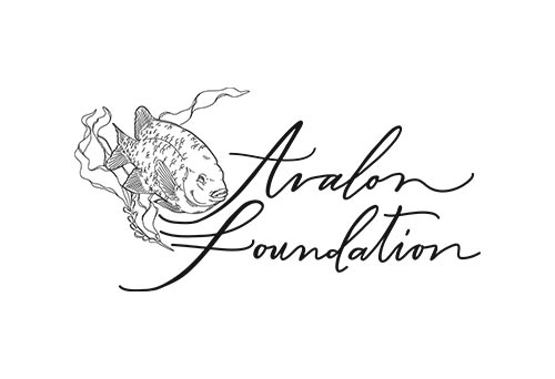 sponsors-avalonfoundation